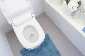 トイレ掃除・クリーニング